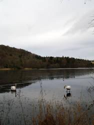 At the Lake 2