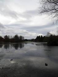 At the Lake 5
