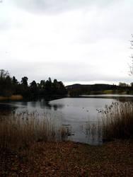 At the Lake 7