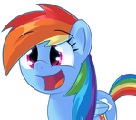 Dash is excite!