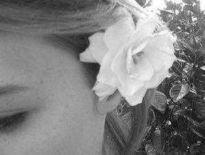 Gardenias R 4 Spring by unlikemonday