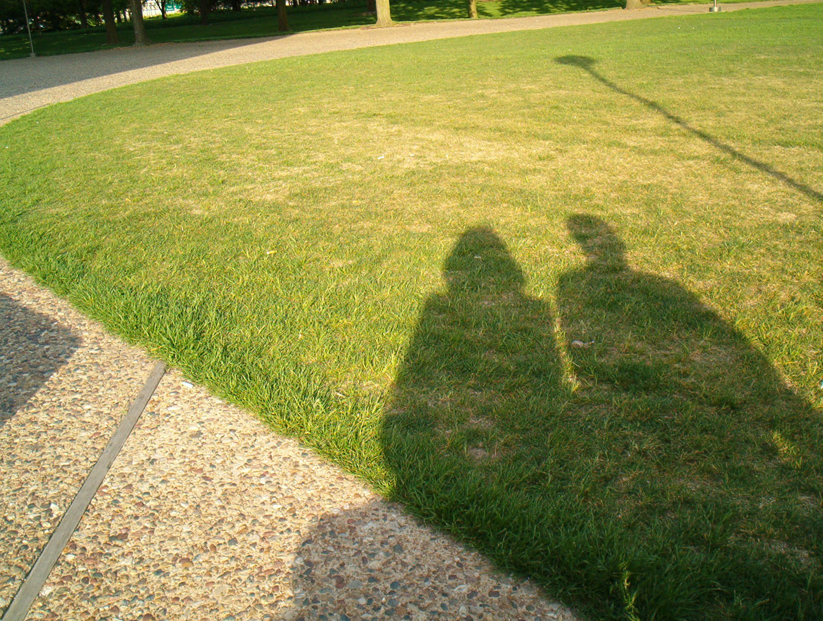 Shadows in the grass by unlikemonday