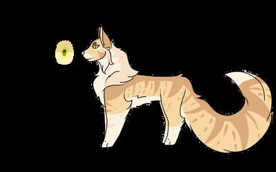 Warrior Cat Design #4: Goldenflower by shadowmoon738