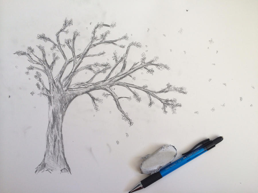 sketch cherry blossom tree by ennj on deviantart