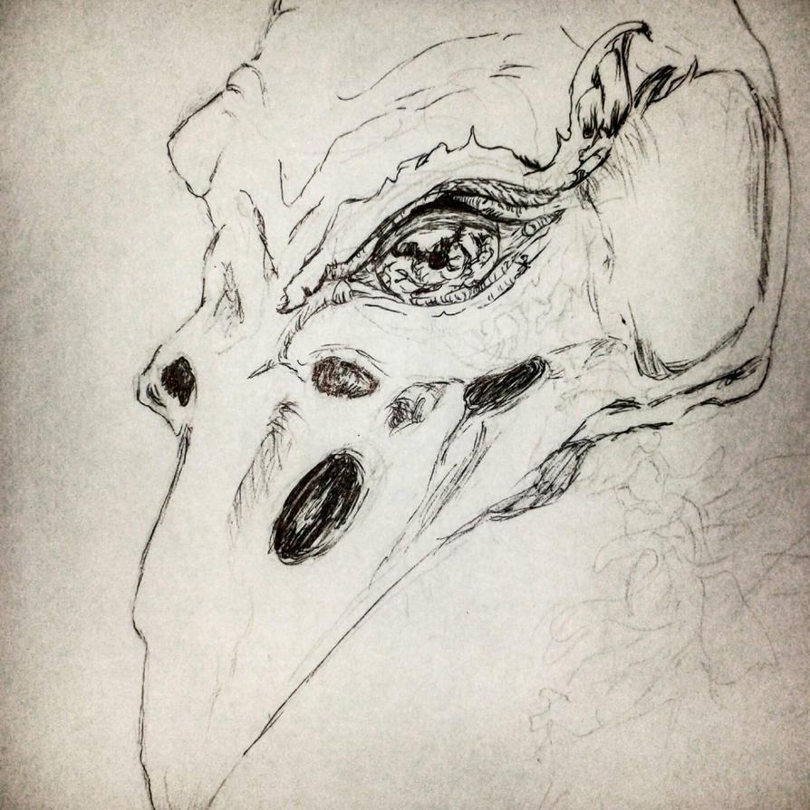 cuervo by amipem