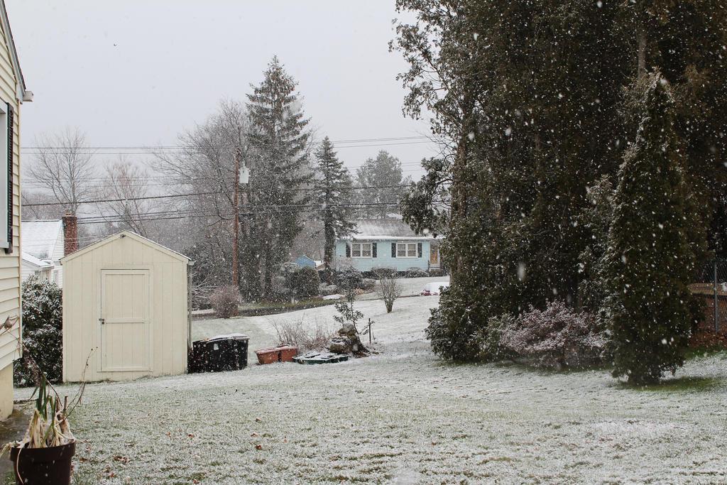It's Snowing by ADU101