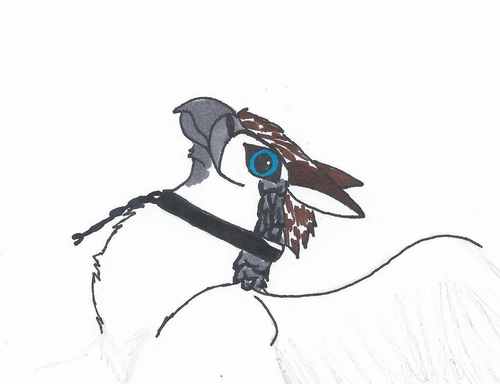 Gryphon (WIP1) by ADU101