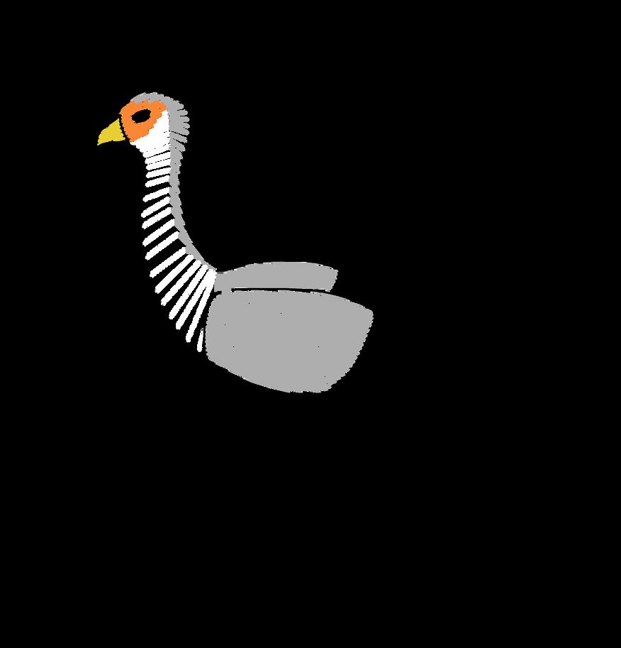 Secretary Bird by ADU101