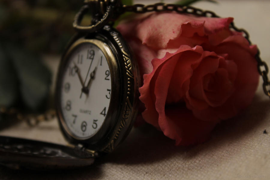 Time is beautiful by Seqbre