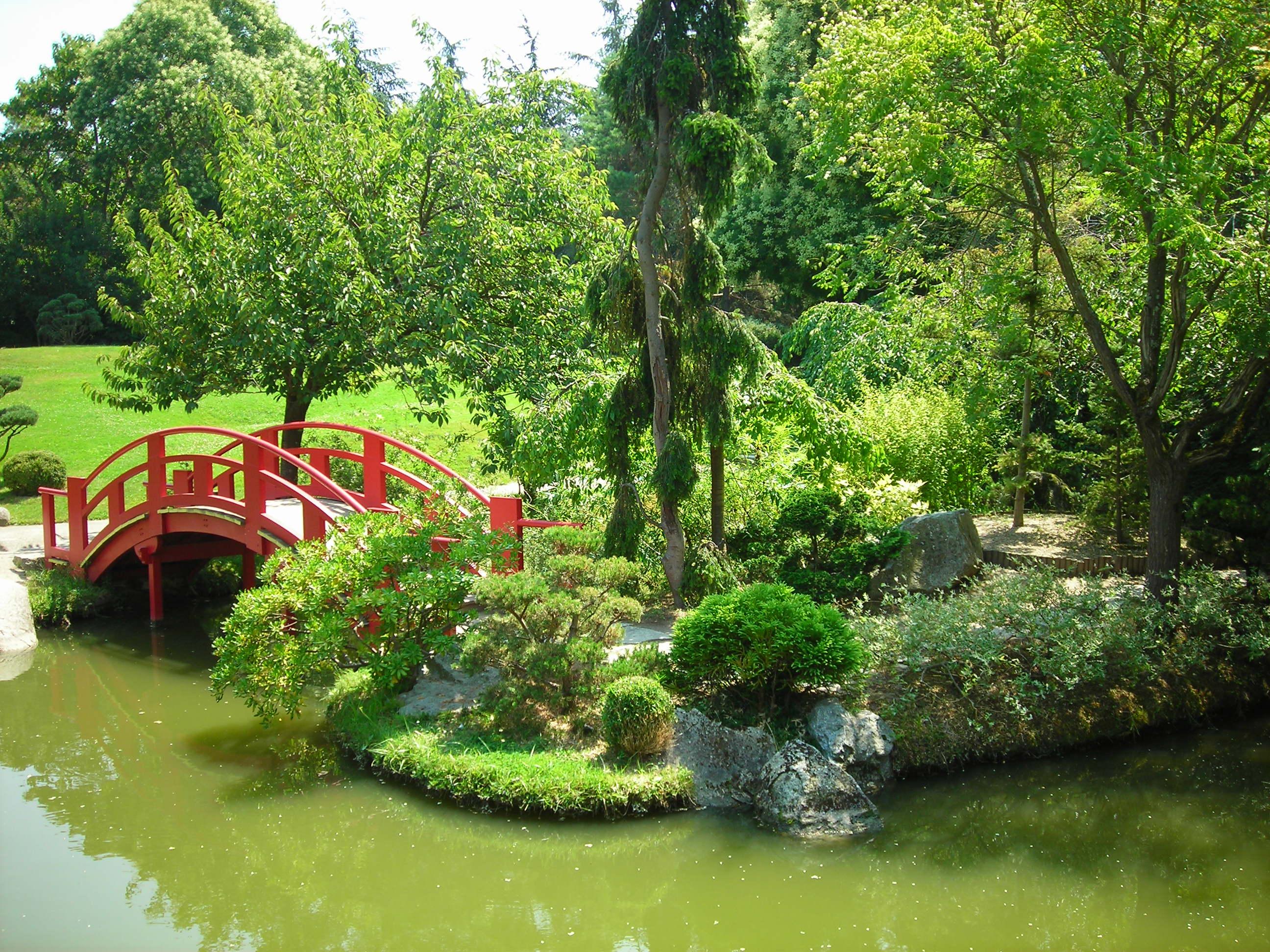 jardin japonais kaiyushiki by misaart on deviantart. Black Bedroom Furniture Sets. Home Design Ideas