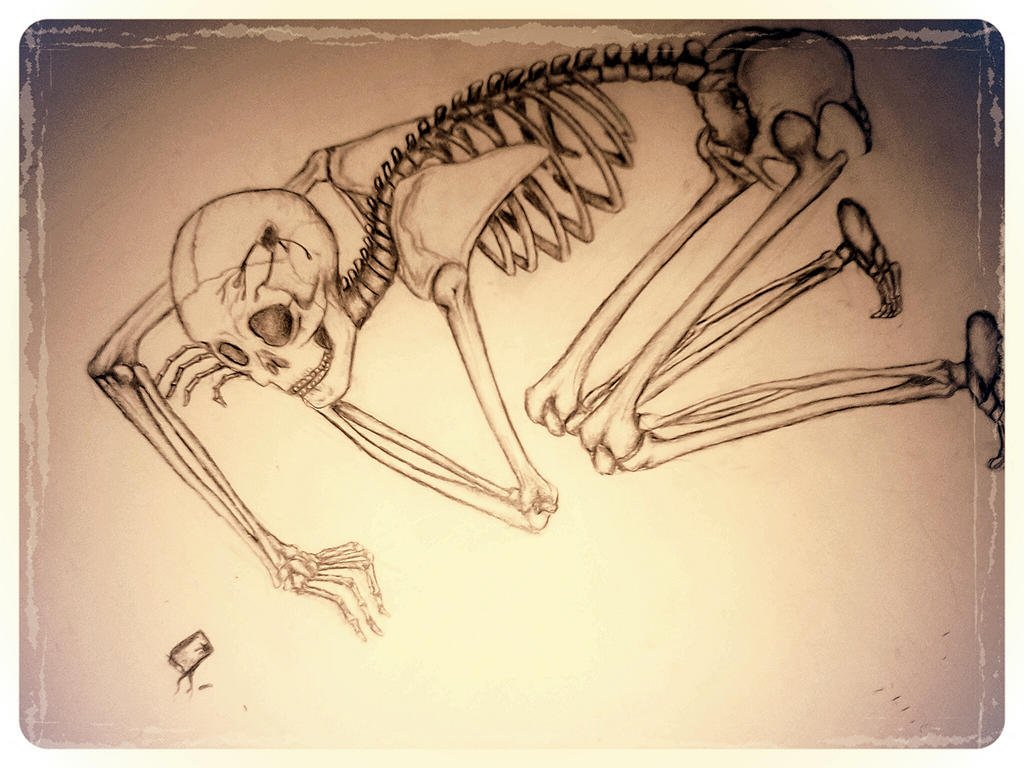 skeleton 3 finished by blackheartedlove