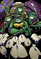 Teenage Mutant Ninja Turtles by Hesstoons