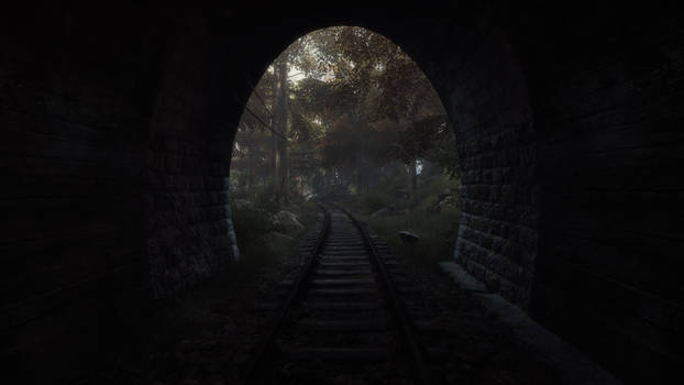 The Vanishing of Ethan Carter #2
