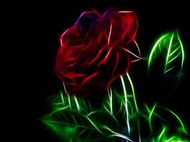 Fractal Rose by MiniMoo64