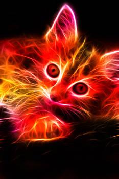 Fractal Kitten
