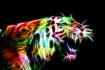 Angry Kitty Fractal