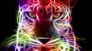 Stare - Fractal Cheetah