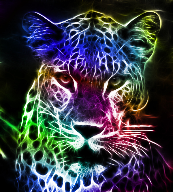 colorful leopard backgrounds artistic - photo #17