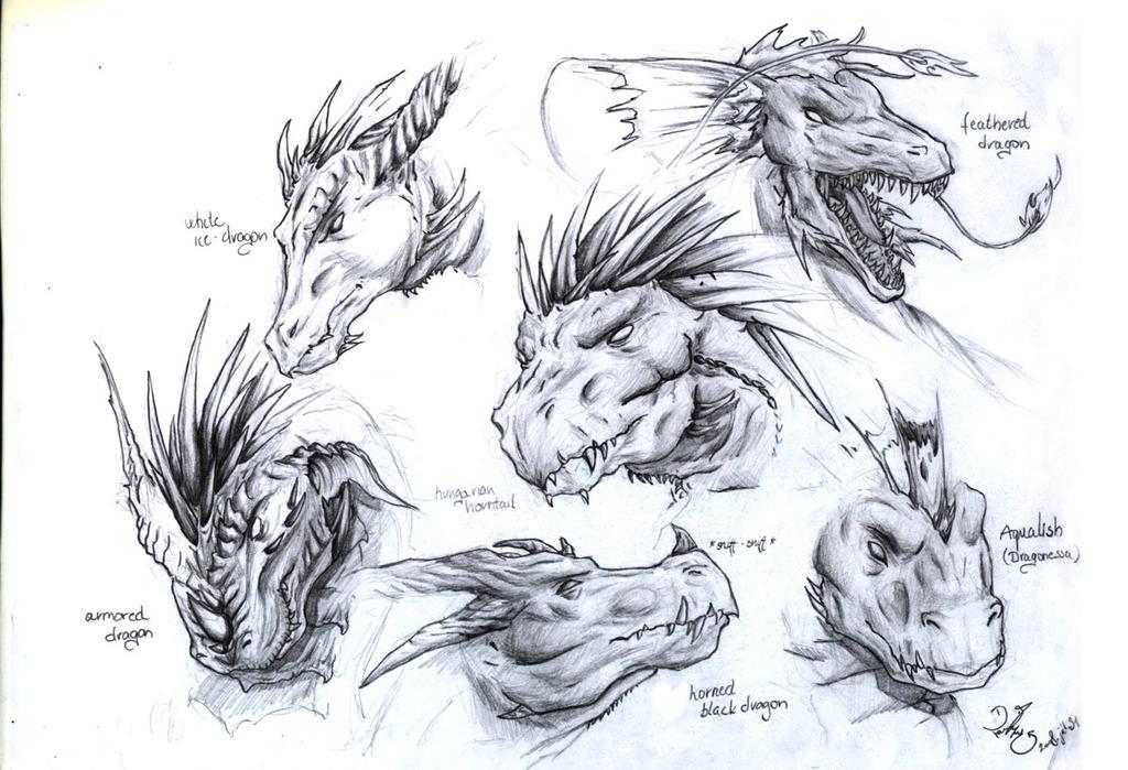 Dragon Head Designs By Dragonlizzard