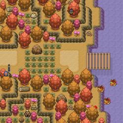 Seasonal Map #2 - Autumn
