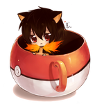 :Pokemon:In:A:Cup:Typhie: