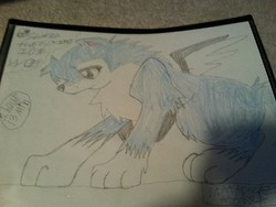 MY O.C) Shard The Flying Ice/Snow Wolf (Male) by DarkL0rd15