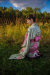 Pussyfoot's Kimono by pendragon93