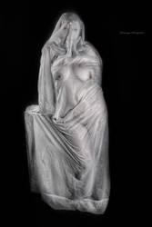 Karli Veiled II by pendragon93