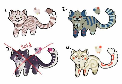 Kitty Adopts