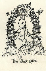 White Rabbit by kaboushka