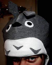 Totoro Hat by kaboushka