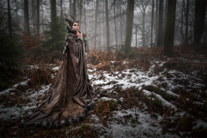 Maleficent Cosplay - Winter Photoshoot by emilyrosa