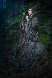 Maleficent Cosplay by emilyrosa
