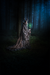 Maleficent Cosplay - In the Dark Forest