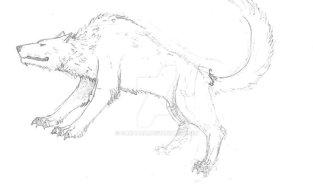 Wolfi by Garharh