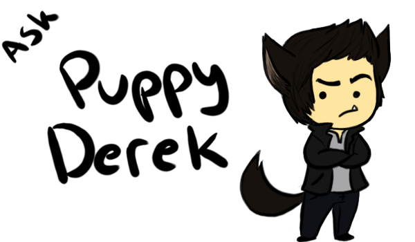 Derek Hale aka Tyler Hoechlin Derek_ask_blog_banner_by_inamkur-d5be28u