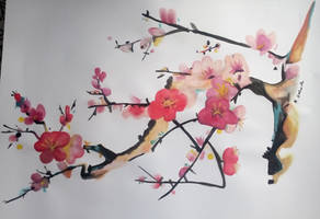 Cherry blossoms 2 by Nienorx