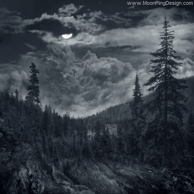 Black Metal Art Forest