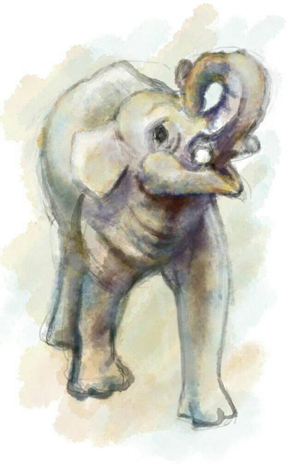 elephant by hrum