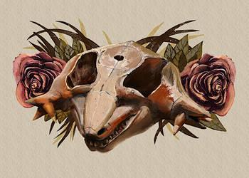 Hypsognathus by hrum