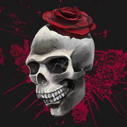 roses by hrum