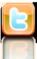 Icono Twitter link 1