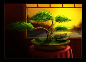 Bonsai by Tamilia