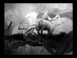 Smoke, Frames and an Elephant by Tamilia