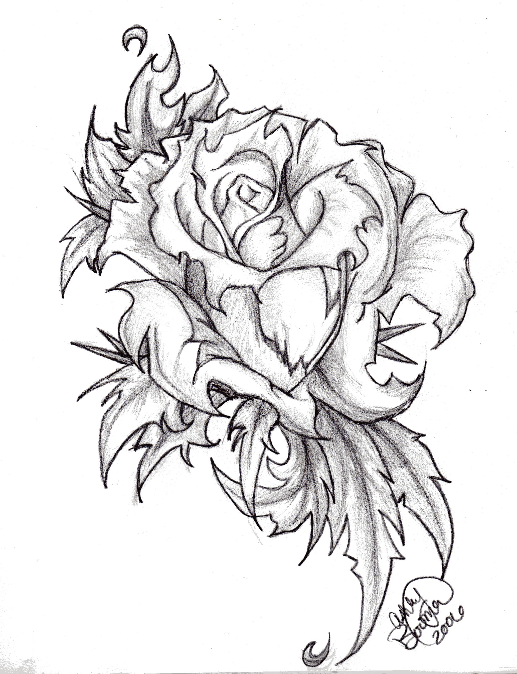 Rose by boomboom34 on deviantart for Cool rose drawings