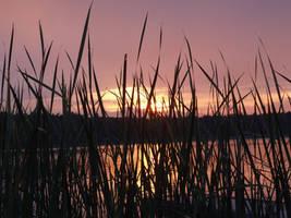 Sunset in Rheinsberg by bormolino