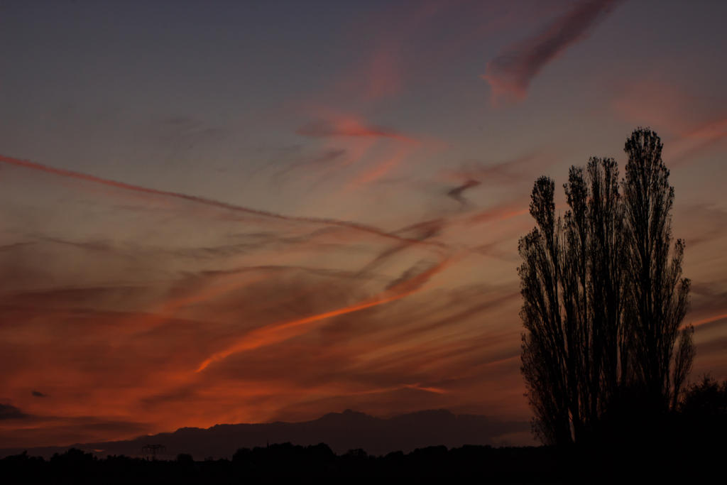 Evening sky by bormolino
