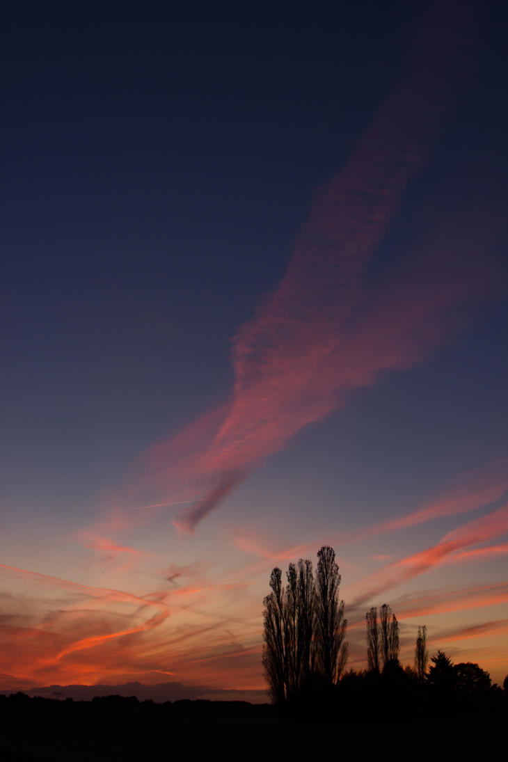Another field sunset by bormolino