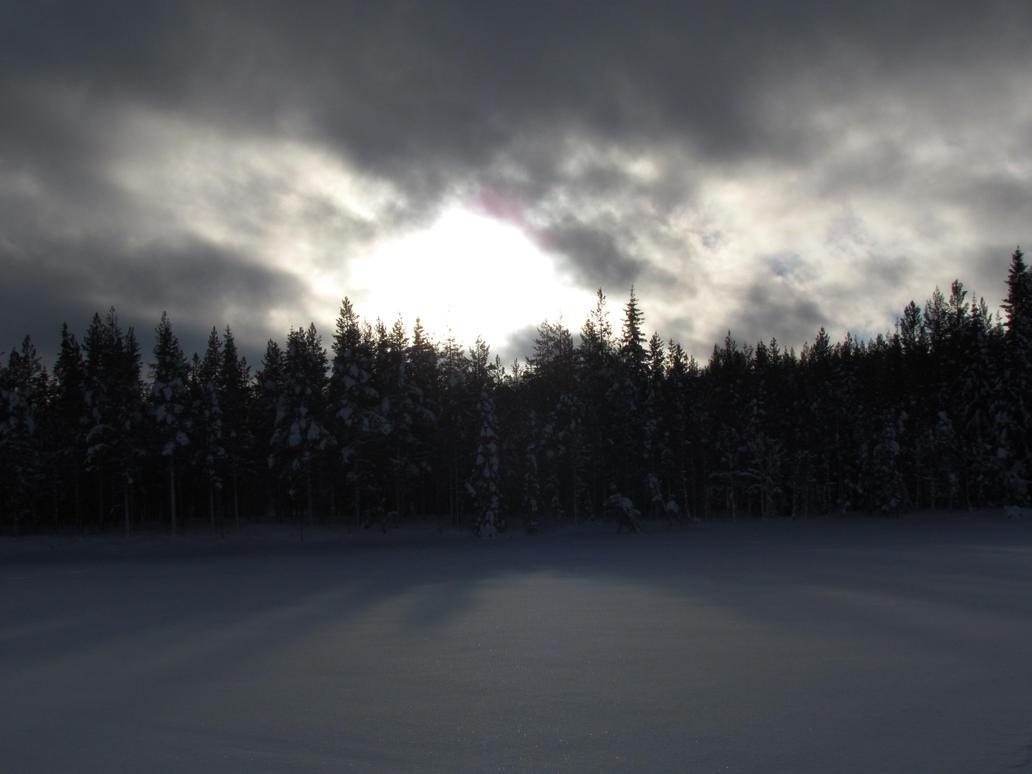 Sunny winter in sweden by bormolino