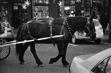 Horse and Carriage by Ya-u